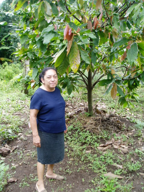Dona Aura in her garden - full of medicinal plants, here in front of a cacao tree