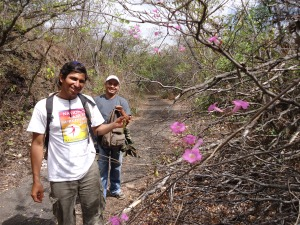 Walk with Erico in the dry forest