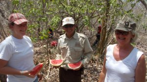 mariposa watermelon delivery service!