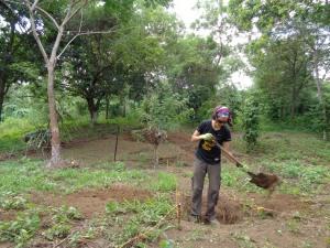 Digging the frog pond...